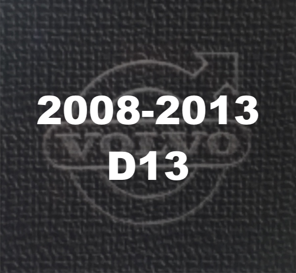 08-13 D13 Logo